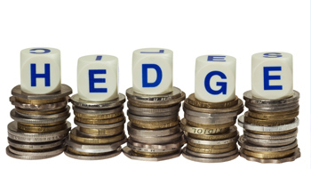 Currency Hedging Services
