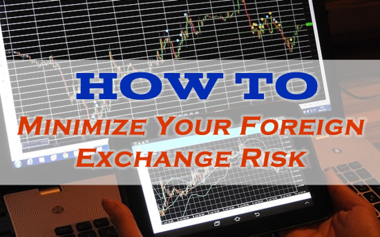 How To Minimize Your Foreign Exchange Risk