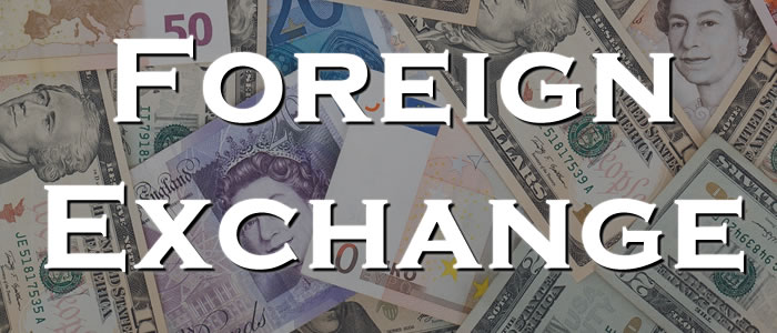 A Complete Beginner's Guide to How Foreign Exchange Works | International  Money Transfers